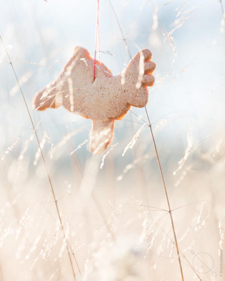 Bezglutenowe ciasteczka korzenne